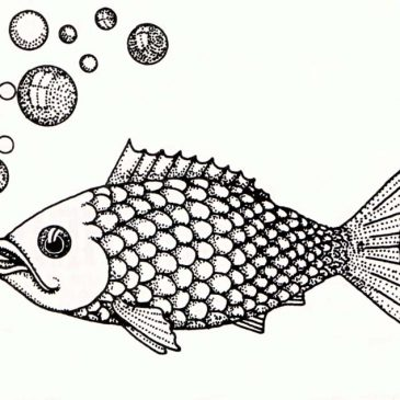 Fish with Bubbles Graphic