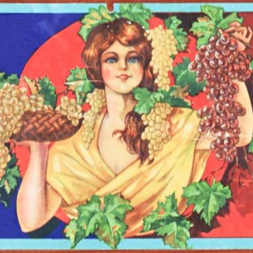 Grape Girl Fruit Label Graphic