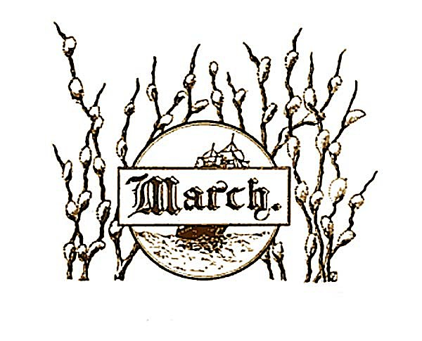 March Pussywillow Header Label Graphic Clip Art